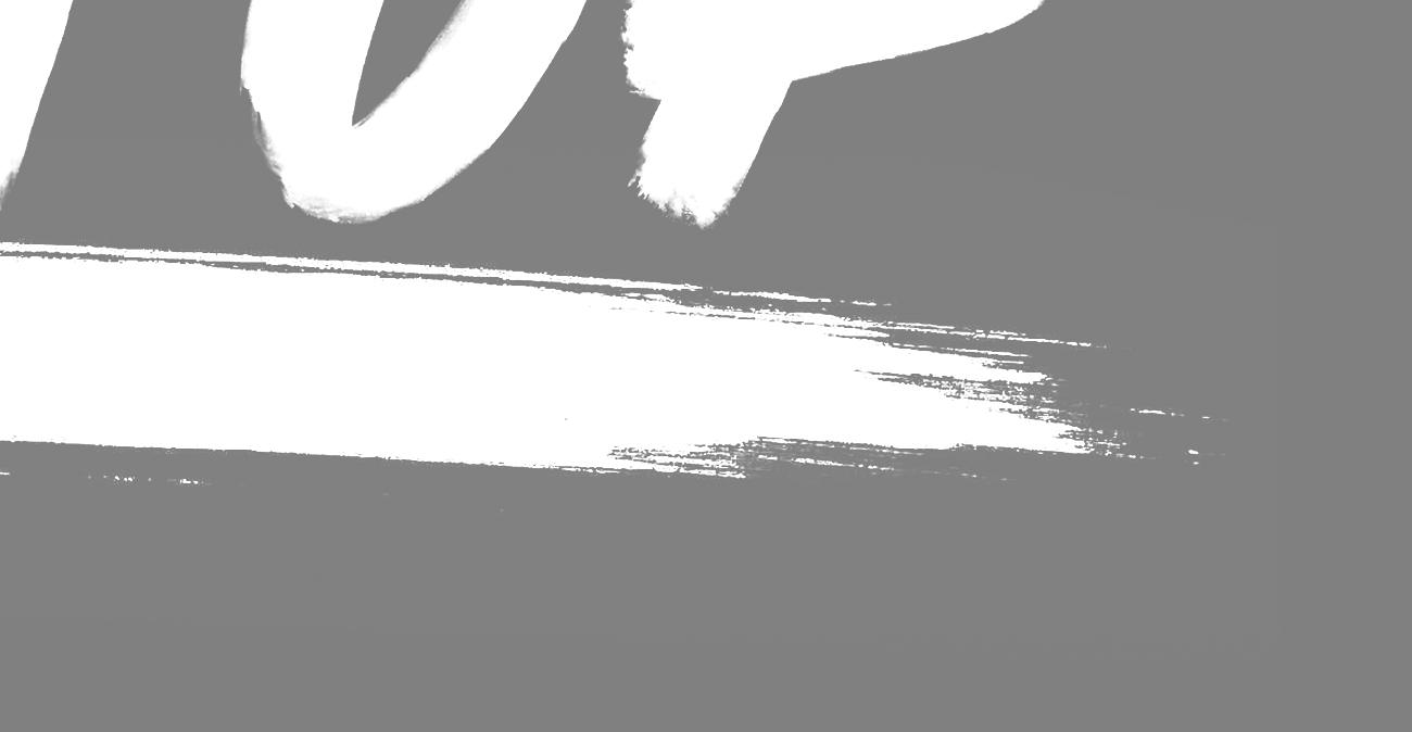 NSPlogo_page 01h